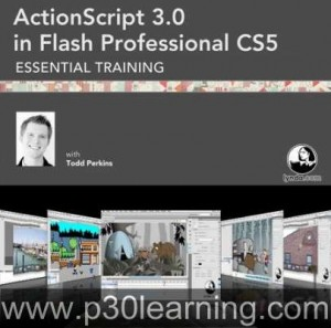 1294320918_actionscript3inflashprowtmk