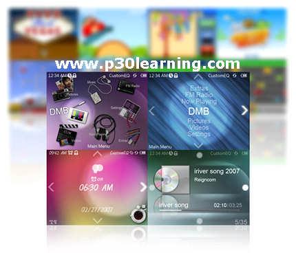 flashlite2.1 p30learning