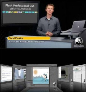 flashprofessionalcs5ess